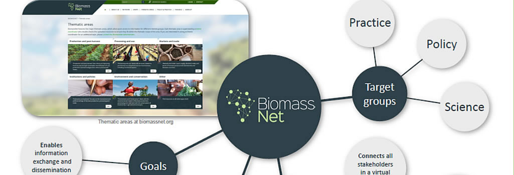 BiomassNet provides an interactive platform for networking and information exchange between experts working on biomass in Africa